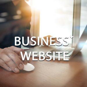 Business Plus Website Package